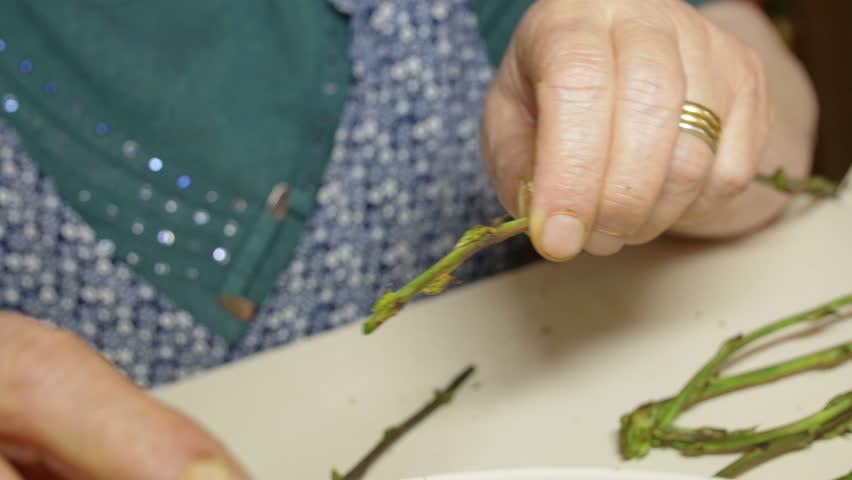 elderly woman is peeling and preparing wild asparagus to cook