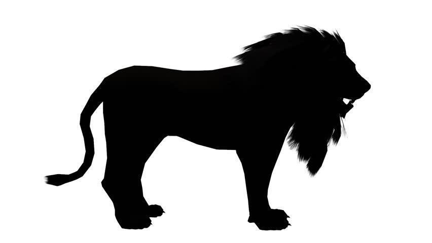 Lion Looked Around,Endangered Wild Animal Wildlife Sketch ...