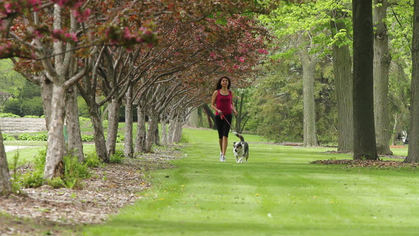 Woman jogging in the grass with her dog - HD stock footage clip