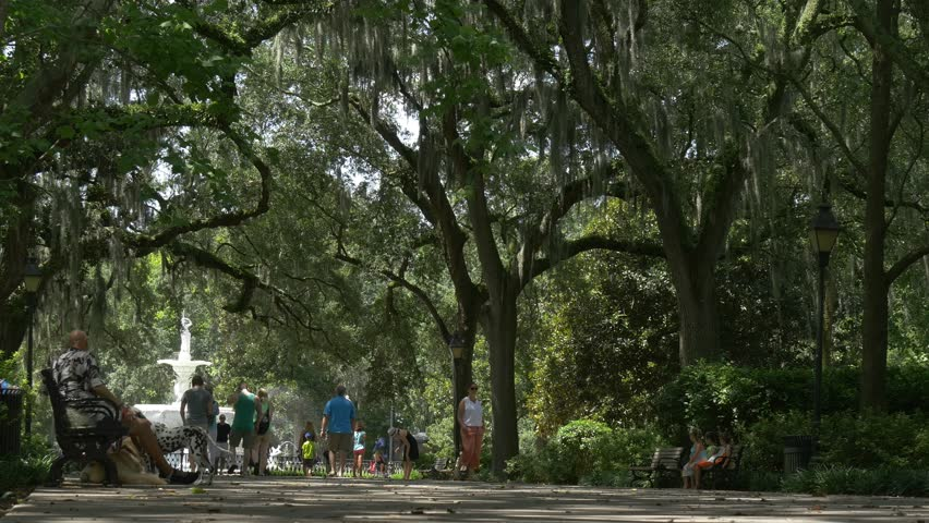 Alley in Savannah park