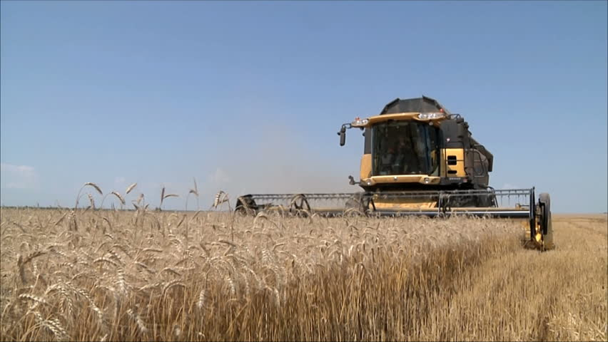 Wheat harvesting shearers
