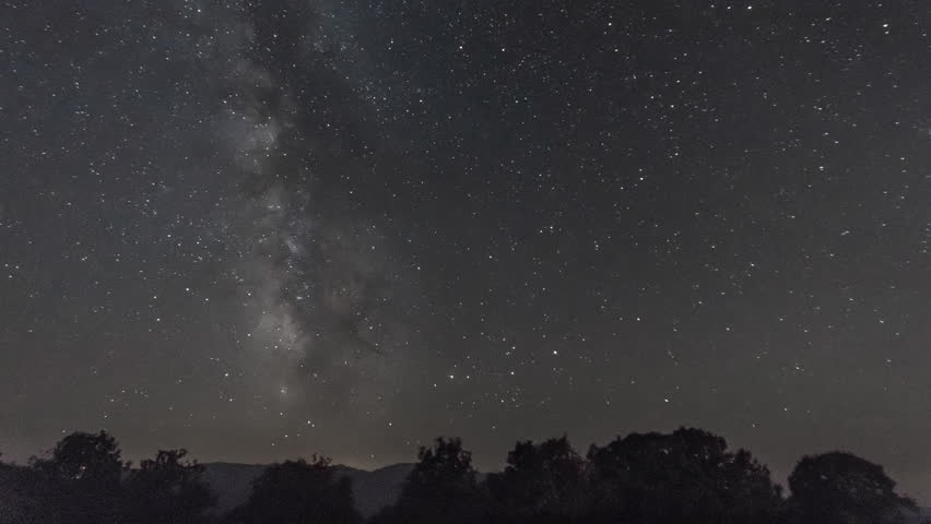 4K Astro Time Lapse Of Milky Way Galaxy Over The Forest ...