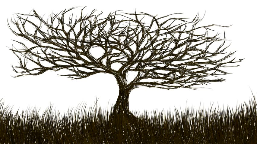 Tree with dense branches originated and developing on the grass - Rotoscoping technique animation