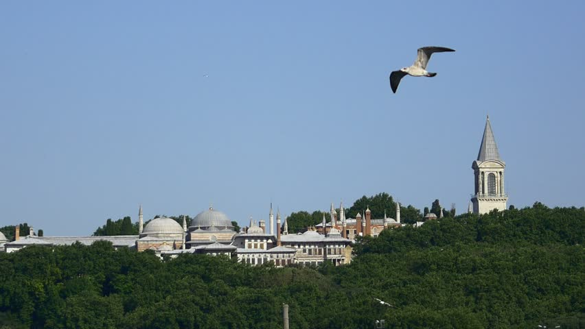 Birds flying slow motion over Topkapi Palace in Istanbul. The atmosphere during sunset, one of the most relaxed you will ever experience in Istanbul. Seagull flying sm