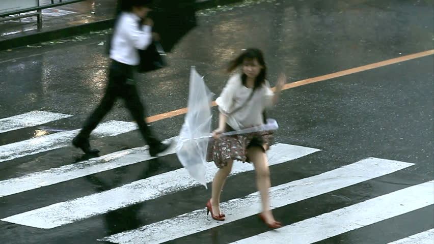 TOKYO, JAPAN - SEPTEMBER 21:  Rain and strong wind during typhoon Roke September 21, 2011, Tokyo, Japan. Landslides and flooding triggered by Typhoon Roke left as many as 13 people dead or missing.