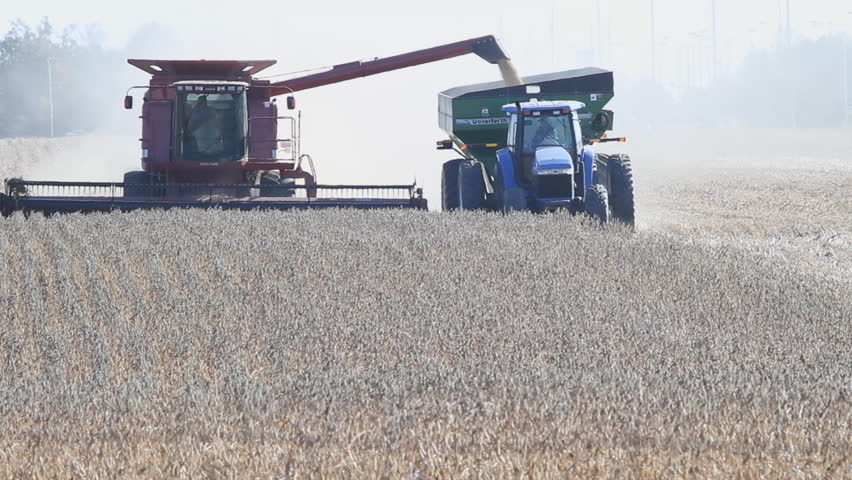 WASHINGTON, CIRCA DECEMBER 2011: Soy beans are harvested on a farm in Washington in December 2011. The U.S. Agriculture Department reported larger than expected soy bean inventories, forcing prices down.