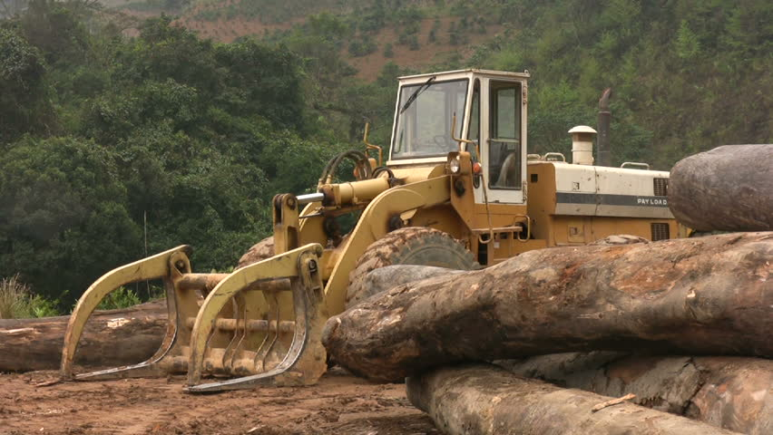 Uncontrolled timber deforestation and destruction of wilderness by illegal logging industry in the rain forest in the Central Highlands of Vietnam.