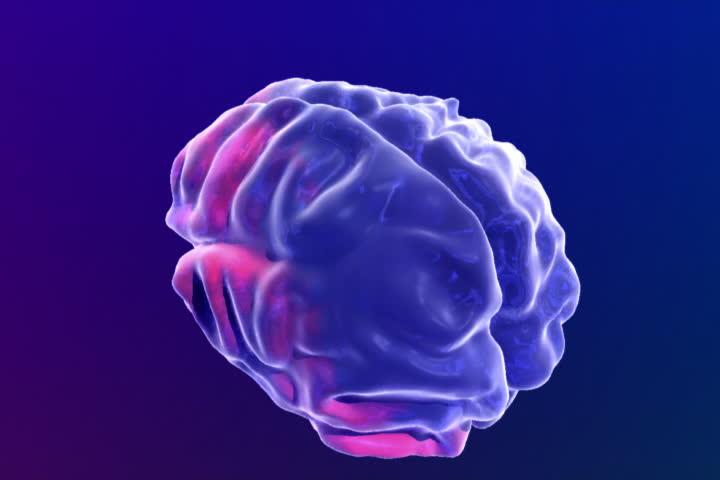 Animated human brain - photo#12