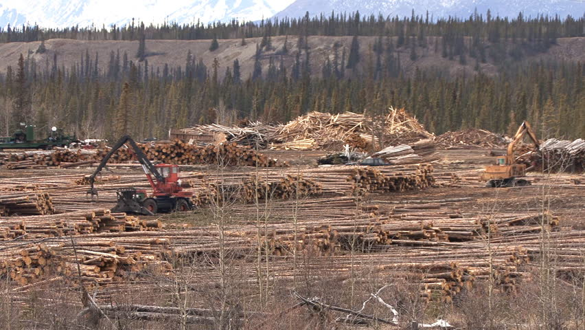BRITISH COLUMBIA, CANADA - CIRCA 2012: Two heavy equipment machines working together in a logging yard.