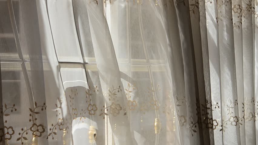 White curtains wind for White curtains wind