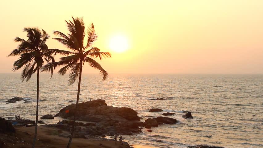 India Goa Vagator beach February 20, 2013. Palm Trees Silhouette At Sunset