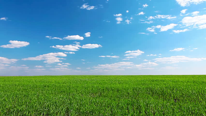 green field and cloudy sky - HD stock footage clip