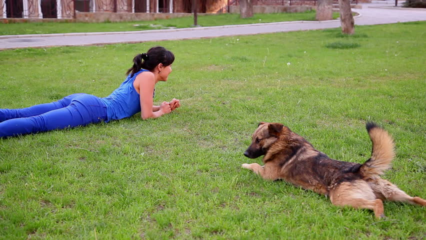 young, beautiful girl playing with dog in park - HD stock footage clip