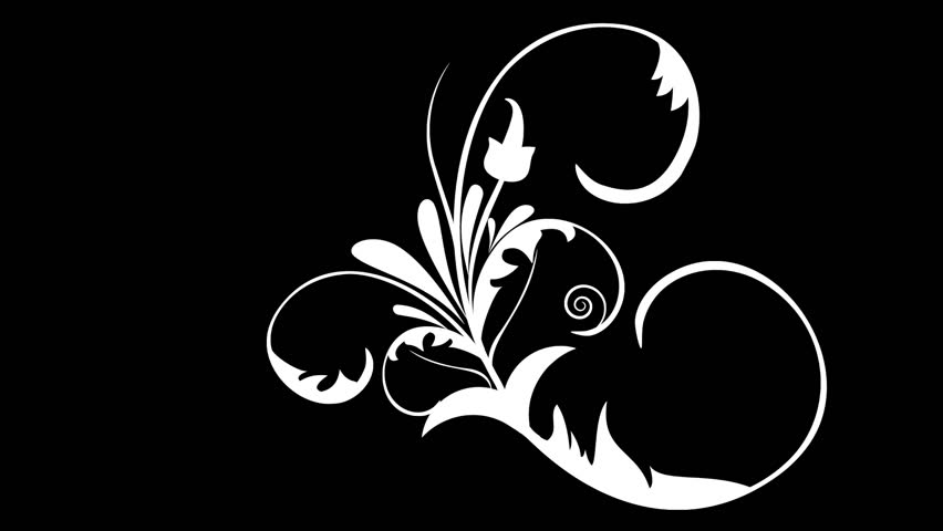 flower ornaments vector design set growing - HD stock footage clip