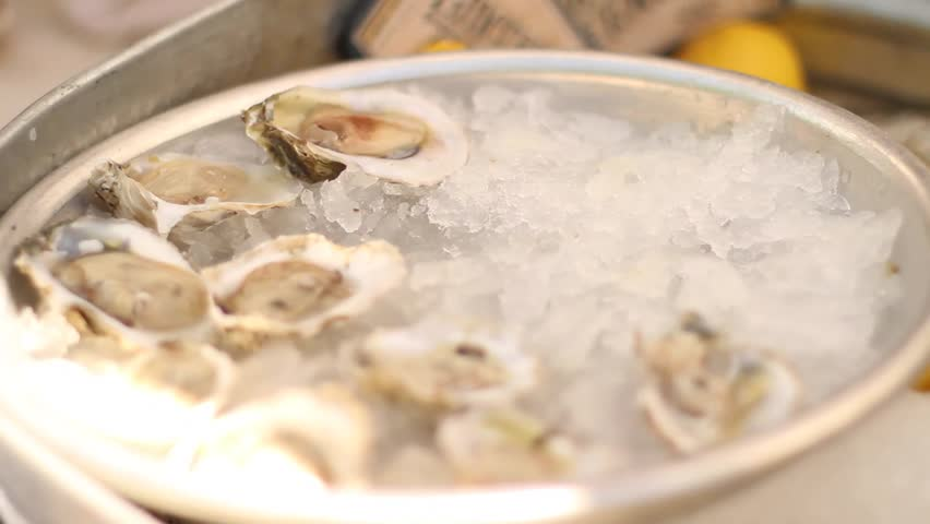 Oysters placed on ice
