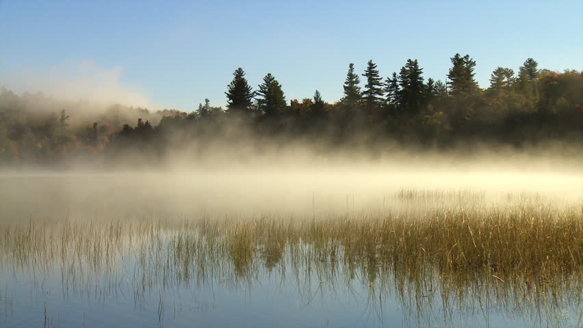 Morning mist flows over marsh grasses on Connery Pond