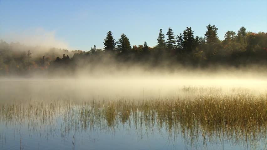 Morning mist flows over marsh grasses on Connery Pond
