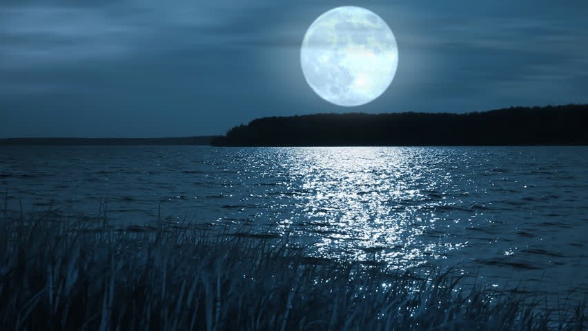 Full moon night landscape with forest lake. - HD stock video clip
