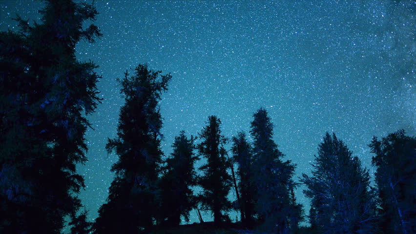 Time Lapse of Ancient Bristlecone Trees at Night