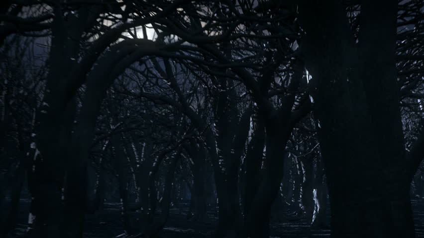 Old Spooky Forest and Moon at Night. Old dead spooky forest. Camera tracks through as branches move in the wind. Computer generated forest with shot moon and sky.