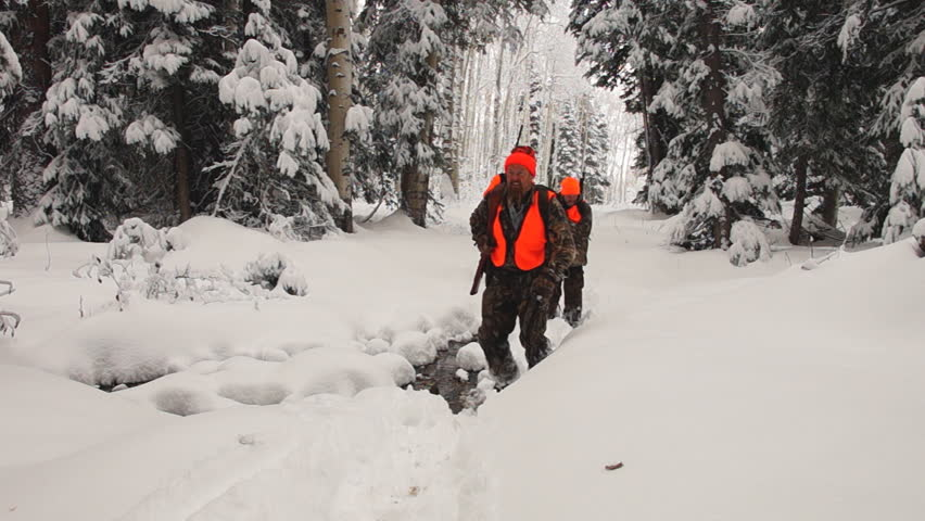 Elk hunters hiking through deep snow in northern Colorado wilderness after an October blizzard. - HD stock video clip