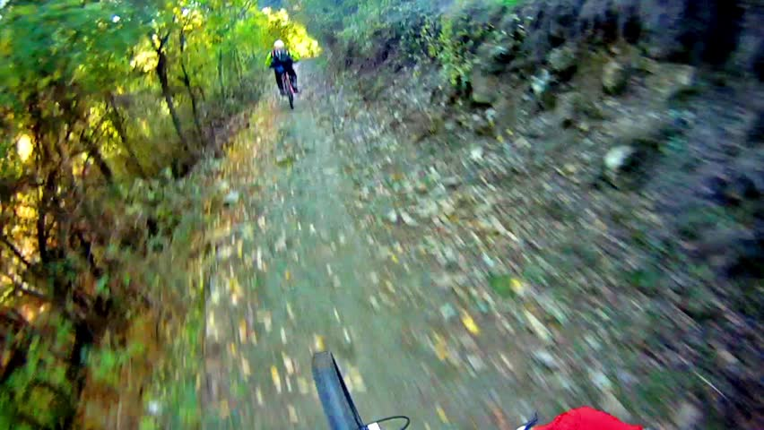 Mountain Bike Video: a Single Track in the Forest - Stock Video. Riding a mountain bike on the Alps: point of view camera filming.pov