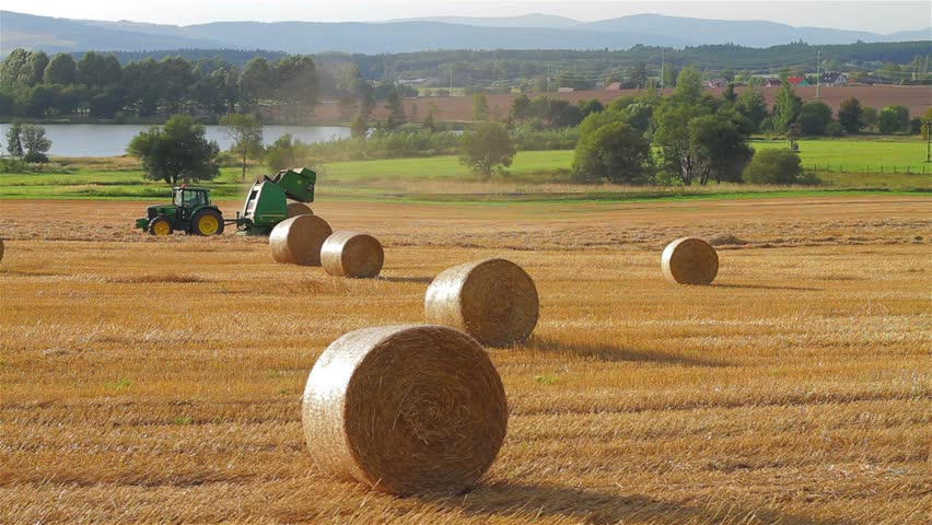 Rural field in summer with bales of hay, tractor releases a hay bale