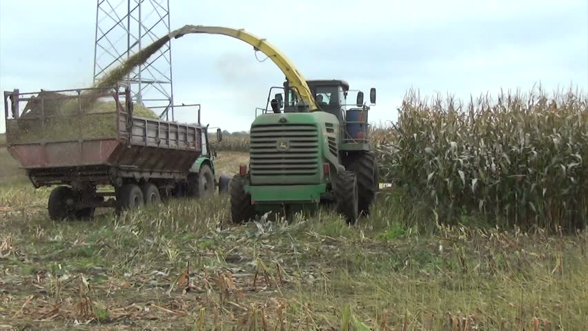 Seasonal farm field work maize field harvest in autumn on October 07, 2013 in Birzai, Lithuania. Harvester cut and pour grain into big tractor trailer. - HD stock video clip