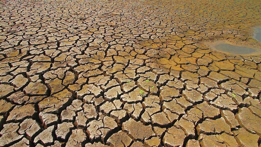 Drought disaster. :High quality footage - original size 4k (4096x2304)