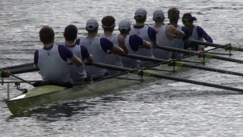 SEATTLE WA, April 12 2014, Rowing teams from the University of Washington, Stanford and Washington State compete. Rowing, Rowers, Row, Crew, Shell, Regatta