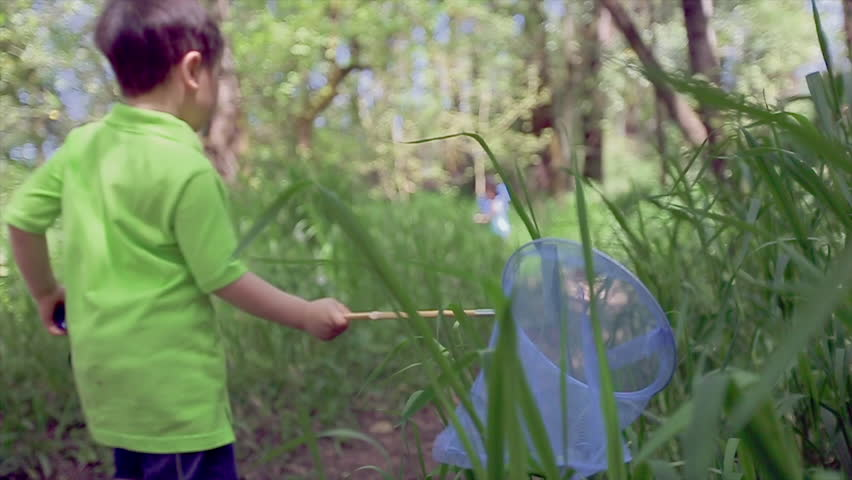 Kids On A Hike, Little Boy Lags Behind His Family, Brushes The Tall Grass With His Butterfly Net