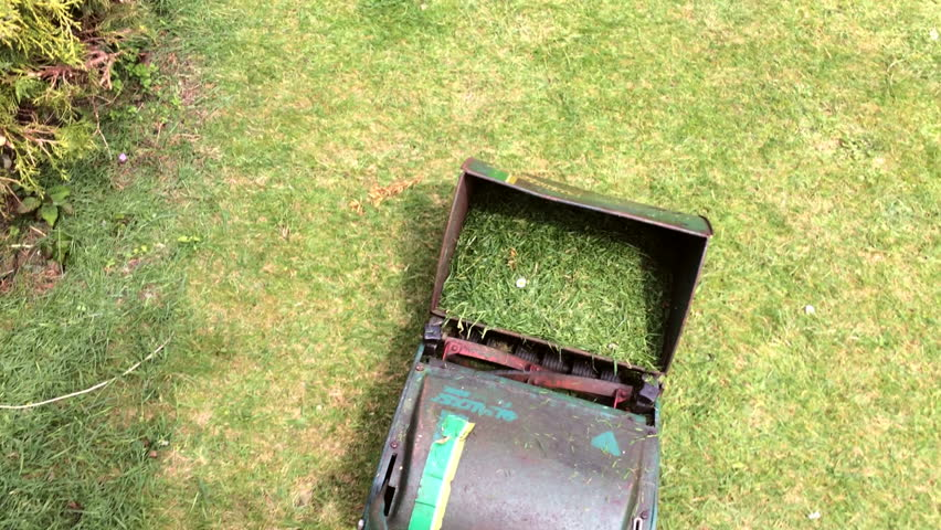 Mowing a green garden lawn with a manual cylinder type mower. View of the person mowing the lawn.