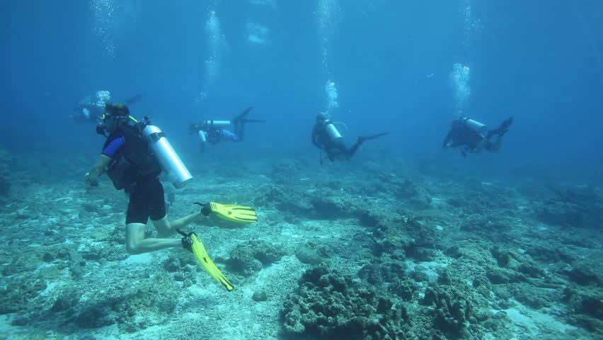 APO ISLAND, PHILIPPINES - MAY 08: Group of scuba divers drift diving over coral reef on May 08, 2014 in Apo Island, Philippines