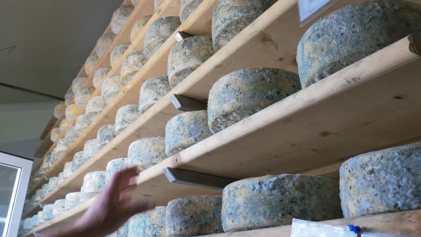Worker in a cheese factory working on cheeses aging