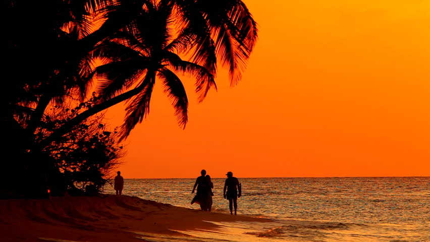 People At Sunset On Tropical Beach Stock Footage Video ...