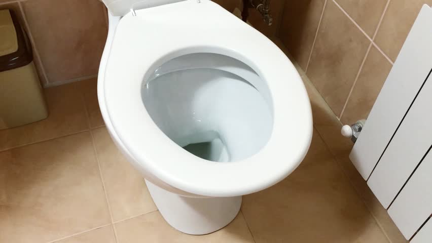 Close up of flushing the toilet bowl