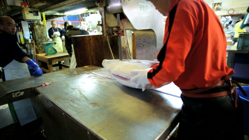 Tokyo - May 2014: Frozen Tuna sliced Japanese workers Tsukiji Fish Market wholesale Retail tourist export Tokyo Asia Japan - HD stock video clip