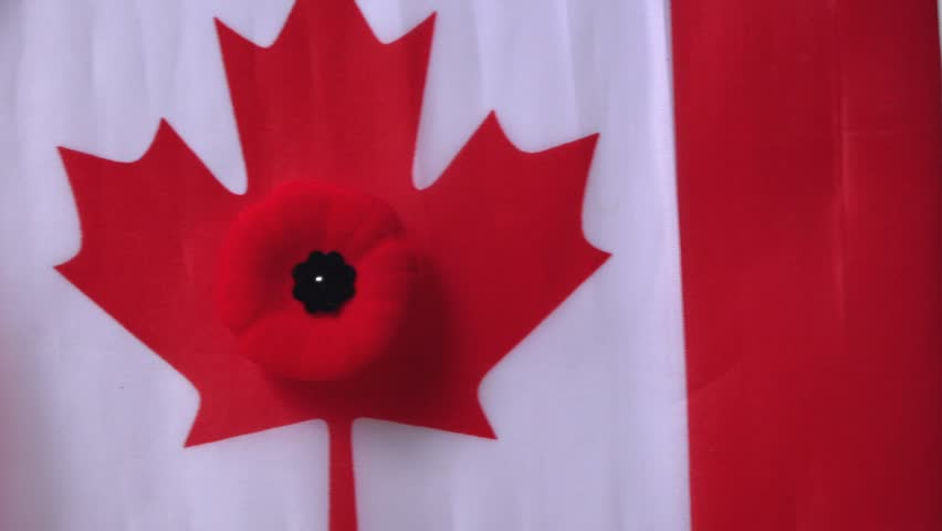 The celebration of the remembrance day in canada