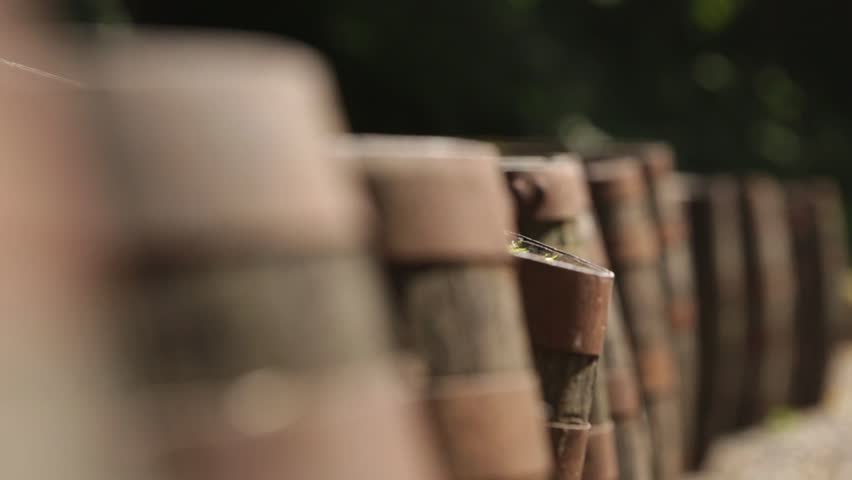 Slider shot of old rustic whisky barrels outside