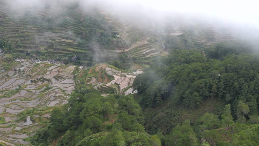 Rice terraces from above in the jungle mountains