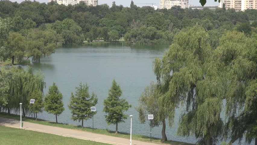 Natural lake, green trees and grass, nice park in the city, clean environment