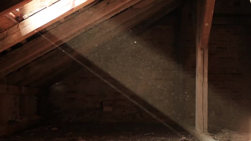 Ray of sun enters the house. Beautiful particles in slow motion within the ray of sun  - HD stock video clip
