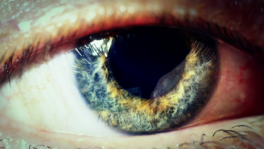 Human eye iris contracting. Extreme close up. 4K UHD 2160p footage.