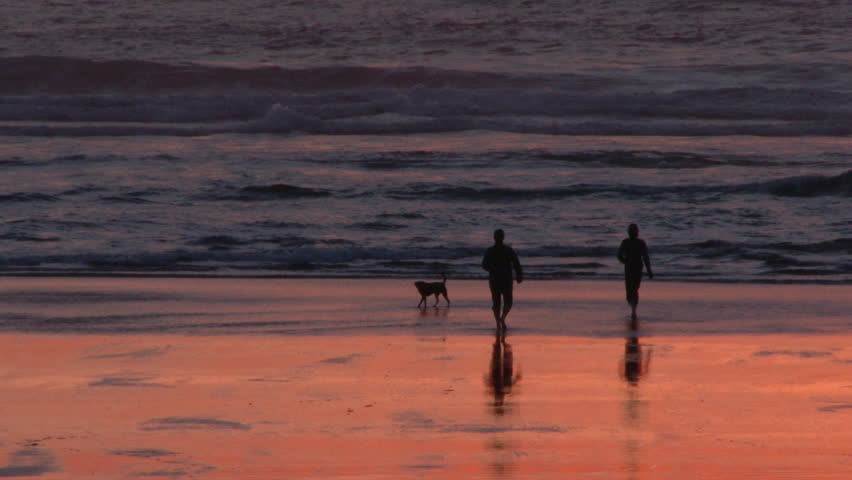 Silhouetted man and woman with their happy dog enjoy sunset at beach together in Oregon.