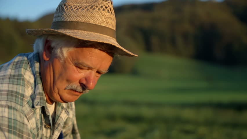 Older farmer with sun in his face when mowing the grass. Slow motion close up footage of a farmer with sun shining in his face when mowing the grass with scythe in the countryside.