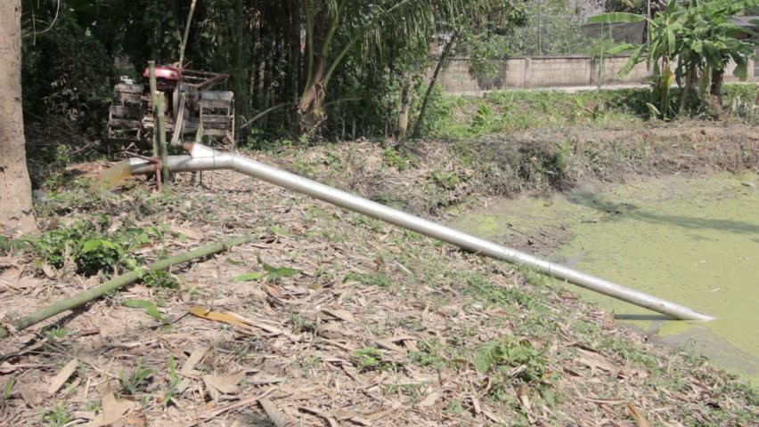 Farmer Using Pushcart To Pump Water Out Of Fish Pond Stock